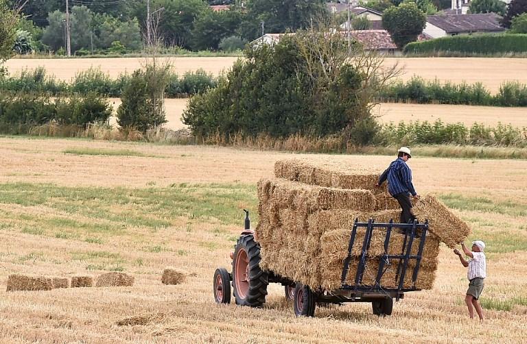 Aude : le report de la visite de Stéphane Travert mal vécu par les agriculteurs locaux